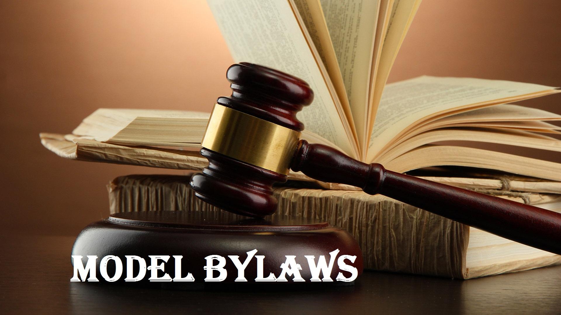 bylaw